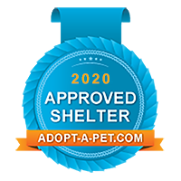 Approved-Shelter_Blue-Badge