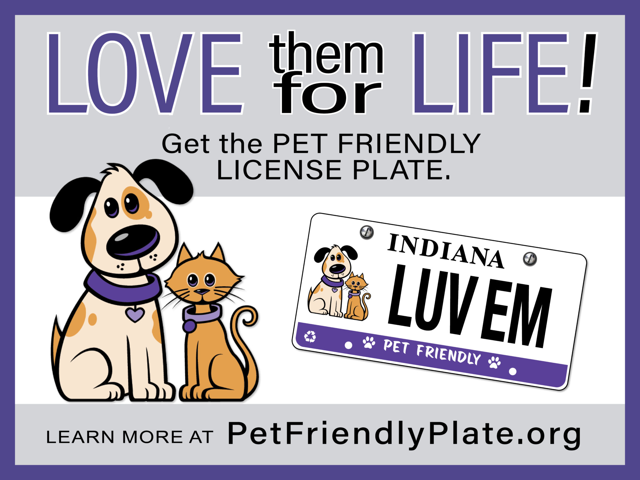 Pet Friendly Plate